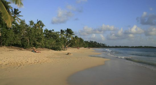 Top 5 Martinique