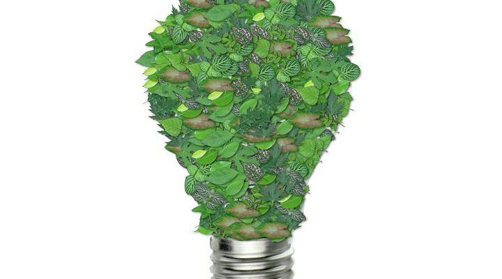 ampoule écologie