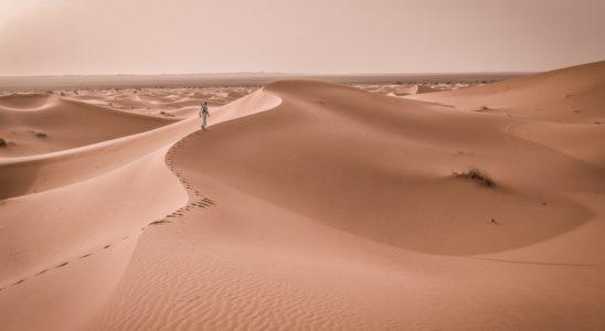 voyage désert marocain